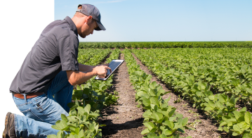 Big data is enabling the agriculture industry to become smarter and more efficient.